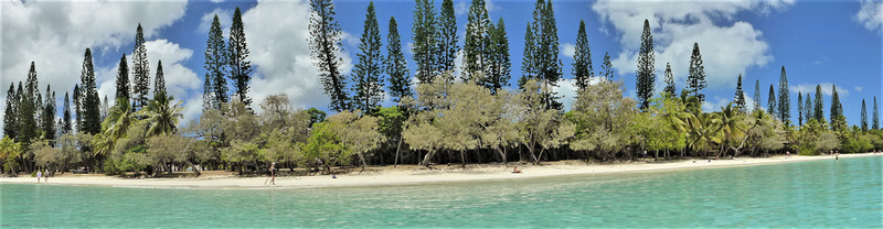"View of a beach on beautiful Ile de Pines (""Island of Pines""), New Caledonia"